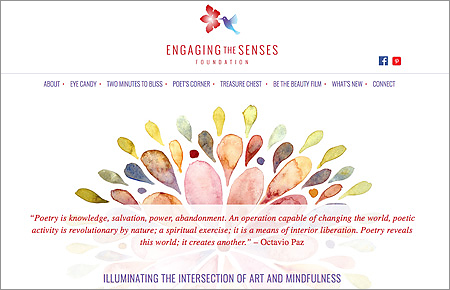 Engaging the Senses Foundation